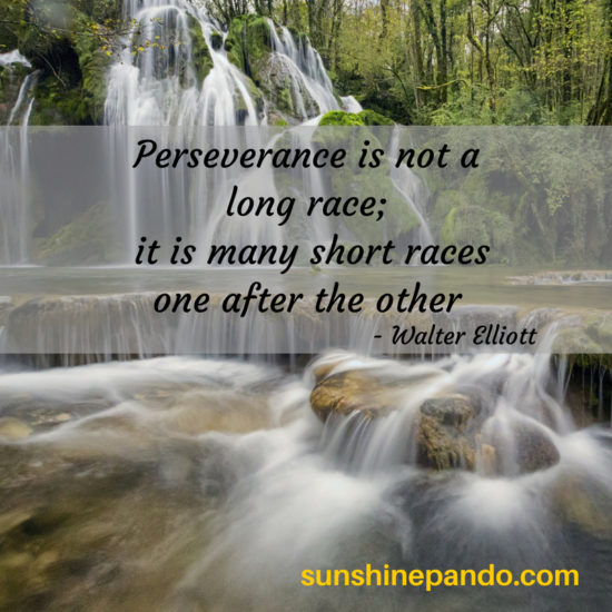 Perseverance is not a long race - it is many short races one after the other.